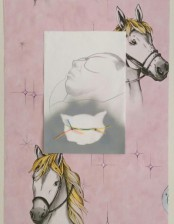 Pony dream, ca. 46x56 cm, collage/drawing on paper, 2014